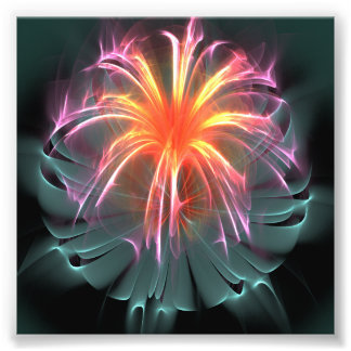 Fiber Optic Flower (square) Photo