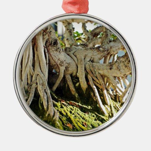 Ficus Banyan Bonsai Tree Roots Christmas Ornaments