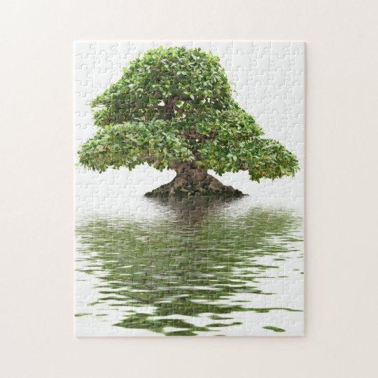 Ficus bonsai jigsaw puzzle