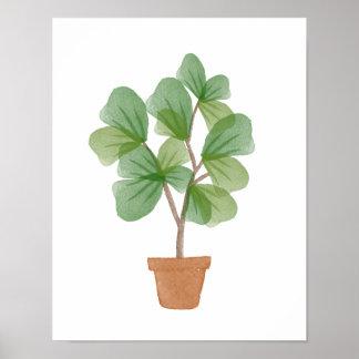 Fiddle Leaf Fig Watercolor Poster