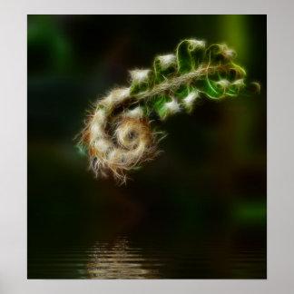 Fiddlehead Fern print