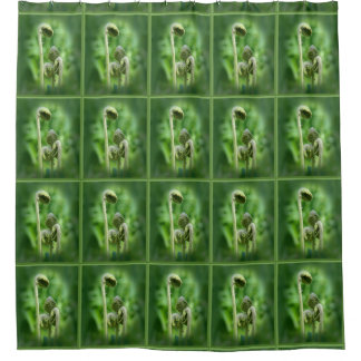 Fiddlehead Ferns Nature Pattern Shower Curtain