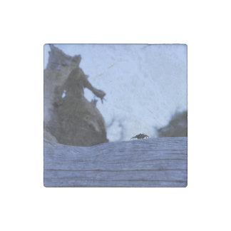Fiddler on the stump stone magnet