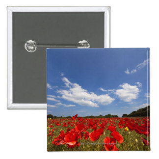 Field Full Of Red Flowers 15 Cm Square Badge