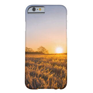 Field Happy Sunset Barely There iPhone 6 Case