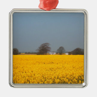 Field in Bloom & Country Cottage Christmas Ornament