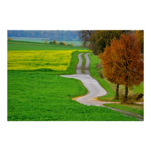 Field landscape with dirt road in the autumn, fore poster