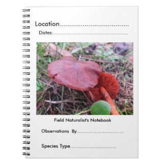 Field naturalist's Notebook by FungiOz