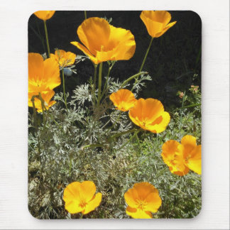 Field of CA Poppies Mouse Mat