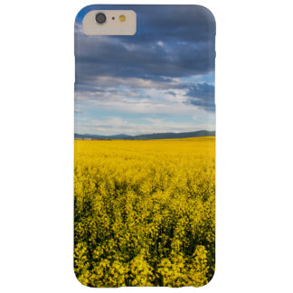 Field Of Canola In Late Evening Light Barely There iPhone 6 Plus Case