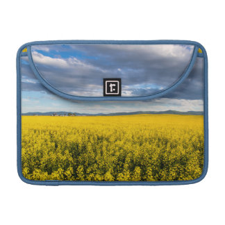 Field Of Canola In Late Evening Light Sleeve For MacBooks