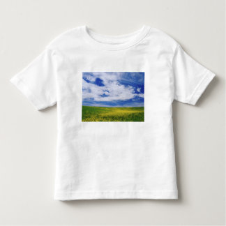 Field of Canola or Mustard flowers, Palouse Toddler T-Shirt
