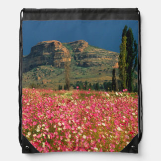 Field of Cosmos flowers, Fouriesburg District Drawstring Bag