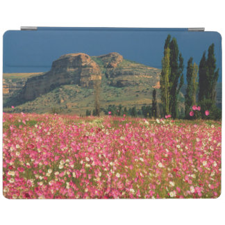 Field of Cosmos flowers, Fouriesburg District iPad Cover
