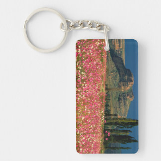 Field of Cosmos flowers, Fouriesburg District Key Ring