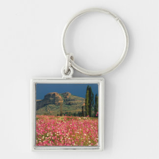 Field of Cosmos flowers, Fouriesburg District Silver-Colored Square Key Ring