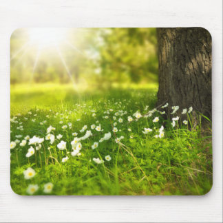 FIELD of DAISIES Mouse Pad
