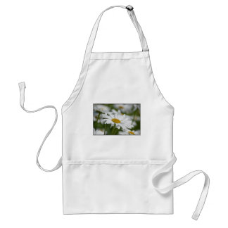 Field of Daisies Standard Apron