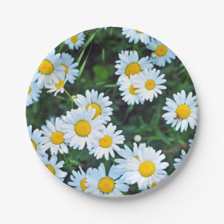 Field of Daisies Summer Party 7 Inch Paper Plate
