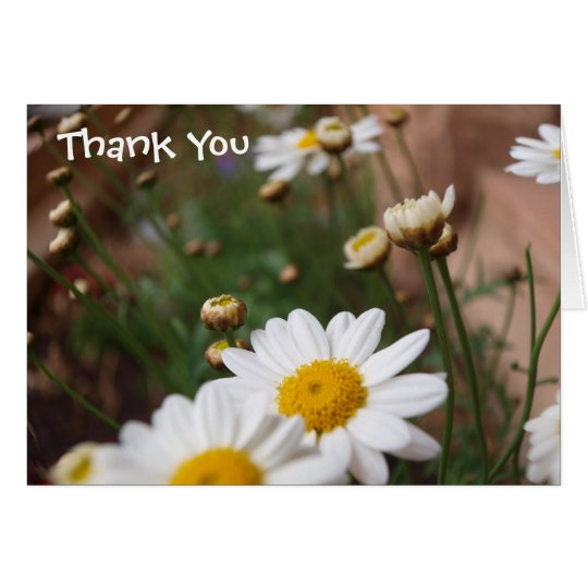 Field of Daisies Wedding Thank You Card