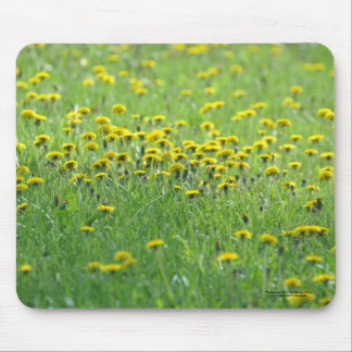 Field of Dandelions. Mouse Pad