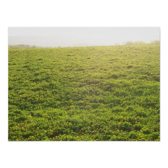 Field of Dandelions on a Bright Day Poster