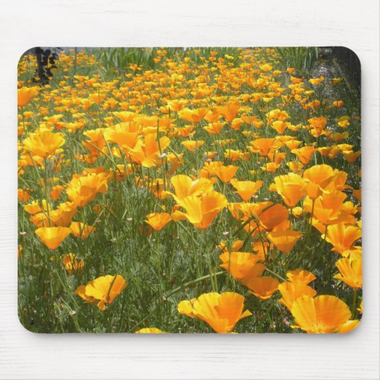 Field of Dreams Mouse Mat
