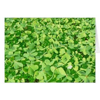 Field of green Clover leaves Card