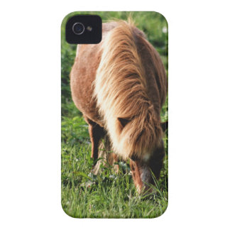 Field of happiness iPhone 4 cases