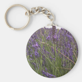 Field of Lavender Basic Round Button Key Ring