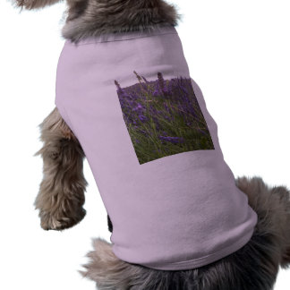 Field of Lavender Shirt