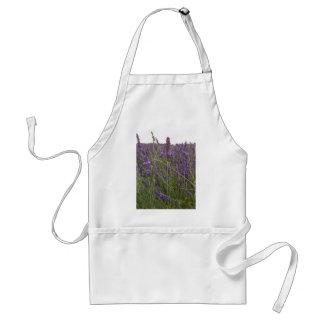 Field of Lavender Standard Apron