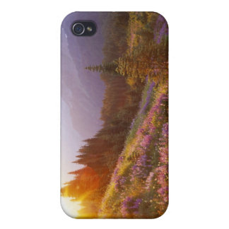Field of lupine and Olympic Mountains at Cover For iPhone 4
