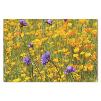 Field of Poppies and Wildflowers Gift Tissue Tissue Paper