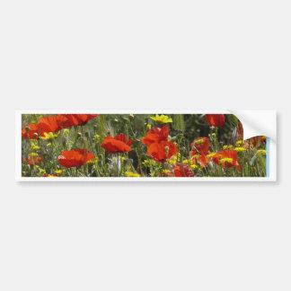 Field of Poppies Bumper Sticker