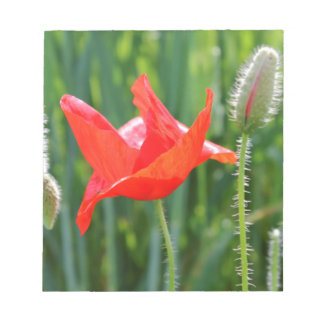 field of poppies notepad