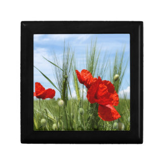 field of poppies small square gift box