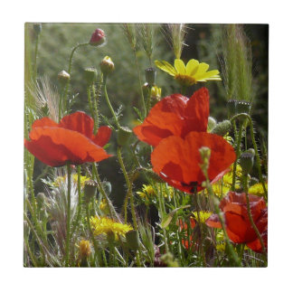 Field of Poppies Tile