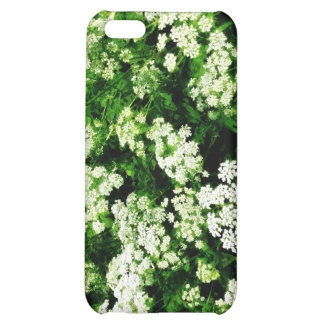 Field of Queen Anne's Lace iPhone 5C Cover
