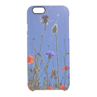 Field of Red Poppies and Blue Cornflowers iPhone 6 Plus Case