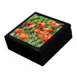 Field of Red Poppies Jewelry Box