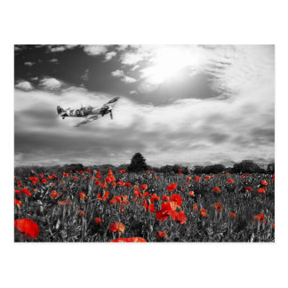 Field of Red Postcard