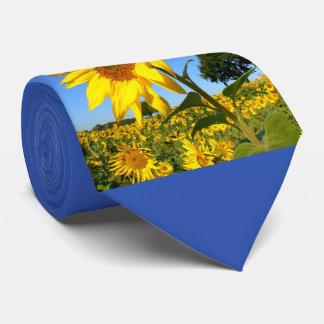 Field Of Sunflowers 1.3, Sunflower Tie