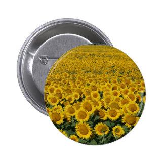 Field of Sunflowers 6 Cm Round Badge