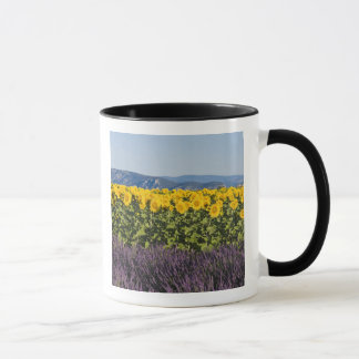 Field of sunflowers and lavender flowers, mug