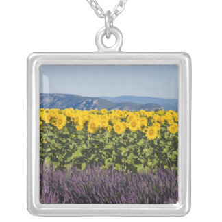 Field of sunflowers and lavender flowers, square pendant necklace