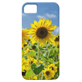 Field of Sunflowers Case For The iPhone 5