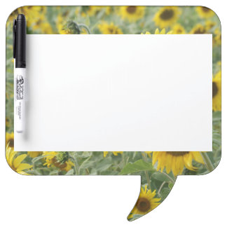 Field of Sunflowers Dry Erase Boards