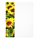 Field of Sunflowers Flyer
