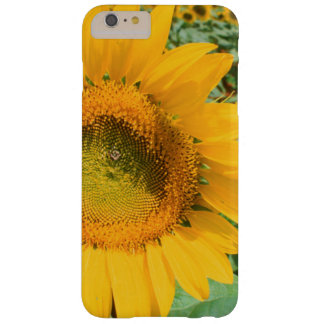 Field Of Sunflowers. Heidleberg District Barely There iPhone 6 Plus Case